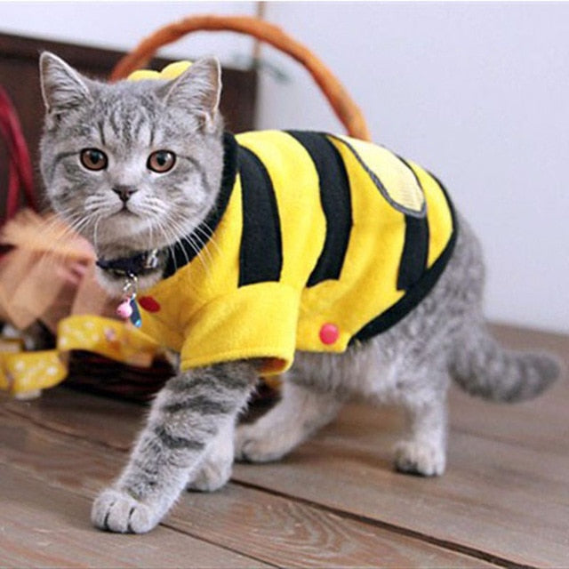 Cat Bumble Bee Costume Yellow / 17cm | CatToyz.com | Shop Cat Toys, Clothes, and Grooming Supplies