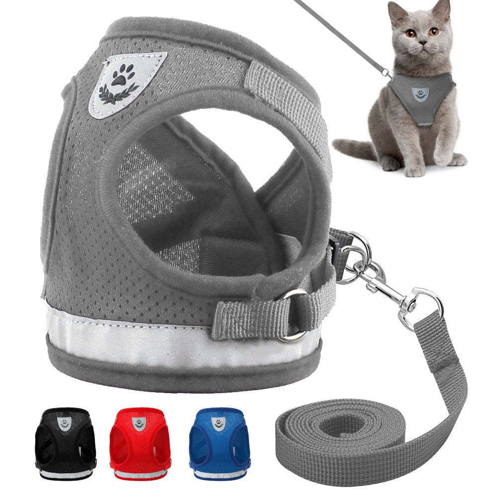 Reflective Cat Leash Set with Soft Mesh Harness  | CatToyz.com | Shop Cat Toys, Clothes, and Grooming Supplies