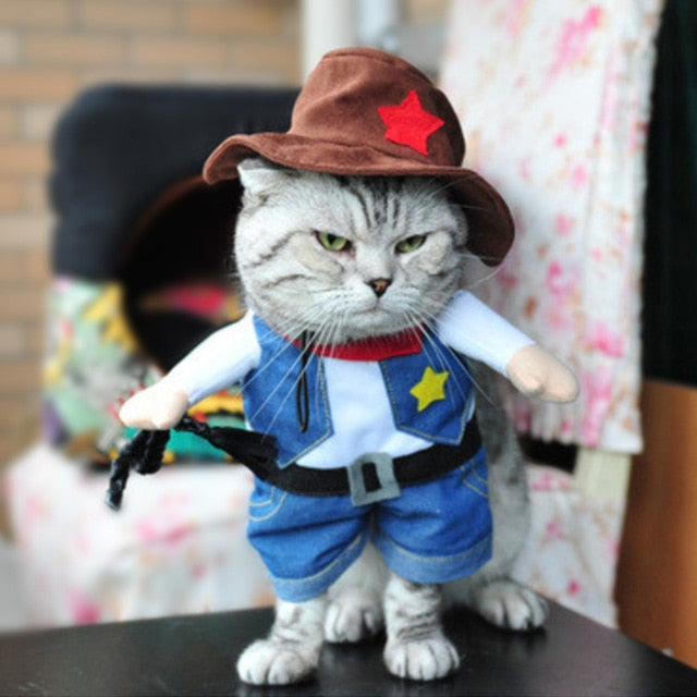 Cat Costumes! Doctor Cow Dinosaur Emperor Pirate Monk Police Cowboy Nurse Kimono or Sailor! Cat Cowboy Outfit / S | CatToyz.com | Shop Cat Toys, Clothes, and Grooming Supplies