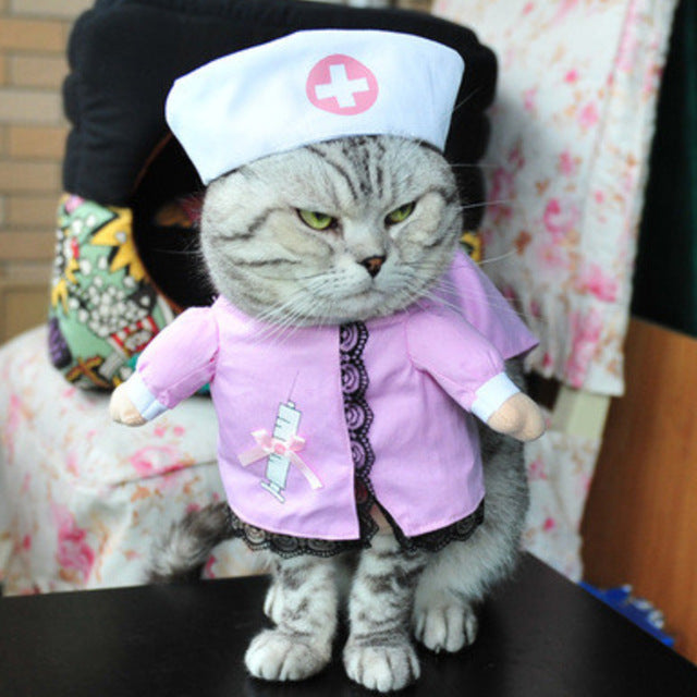Cat Costumes! Doctor Cow Dinosaur Emperor Pirate Monk Police Cowboy Nurse Kimono or Sailor! Cat Nurse Costume / S | CatToyz.com | Shop Cat Toys, Clothes, and Grooming Supplies