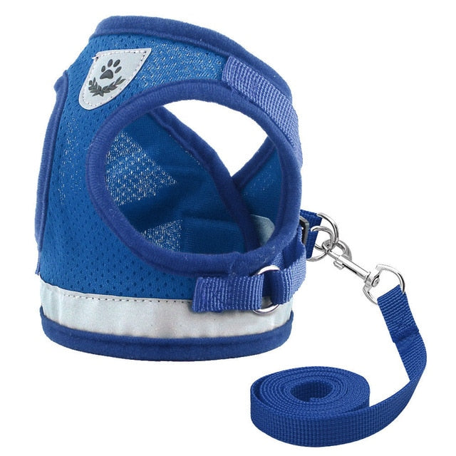 Reflective Cat Leash Set with Soft Mesh Harness Blue / L | CatToyz.com | Shop Cat Toys, Clothes, and Grooming Supplies