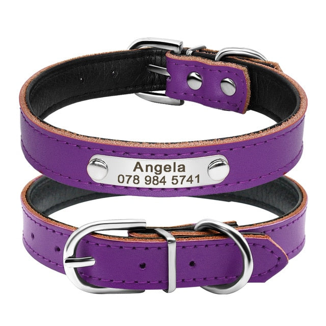 Personalized Leather Cat Collar Purple / Neck fit 32 to 39 cm | CatToyz.com | Shop Cat Toys, Clothes, and Grooming Supplies