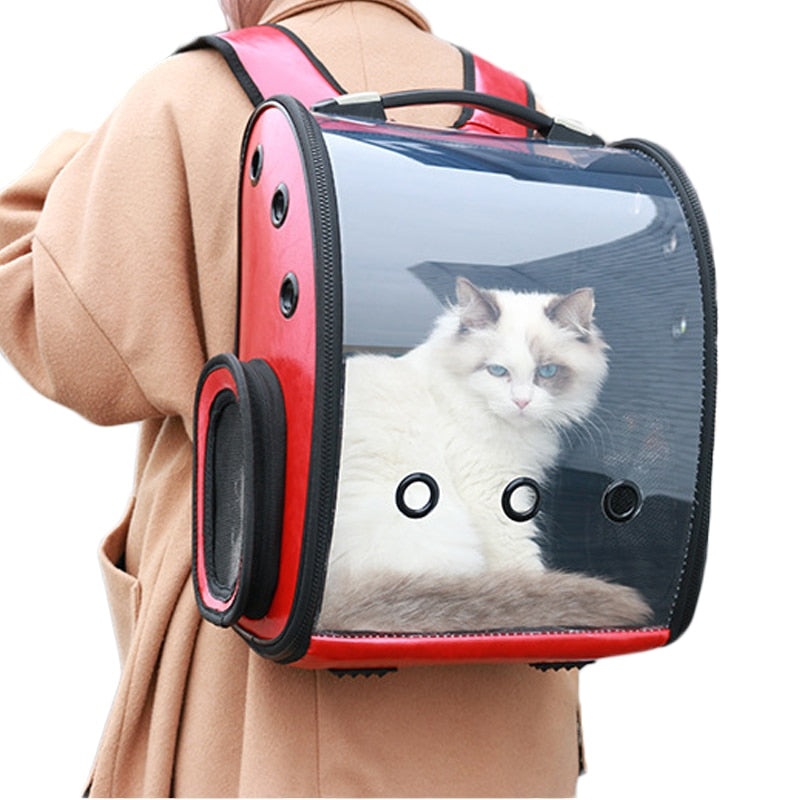 Breathable Space Capsule for Cats  | CatToyz.com | Shop Cat Toys, Clothes, and Grooming Supplies