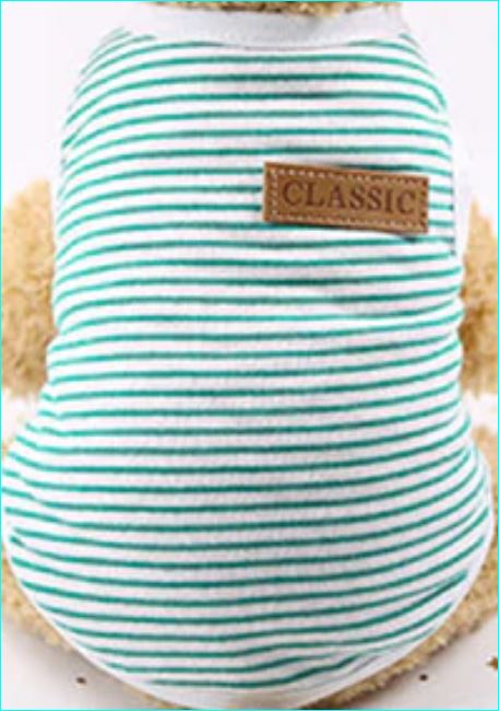 Striped Shirt  For Cats Green / S | CatToyz.com | Shop Cat Toys, Clothes, and Grooming Supplies