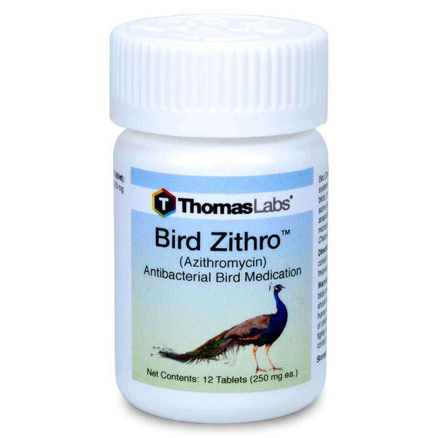 Bird Zithro - Azithromycin 250 mg Tablets (12 Count)