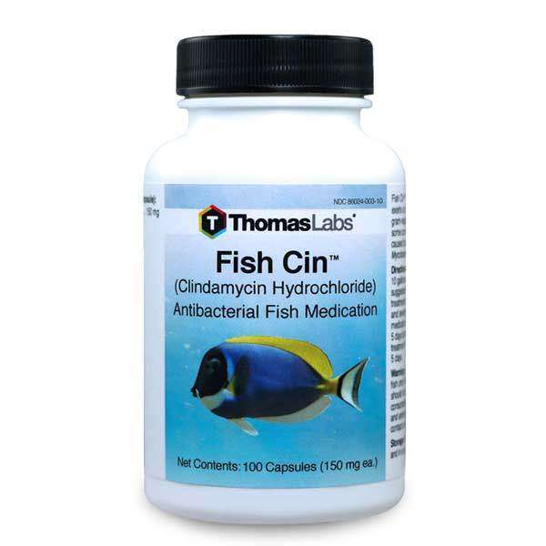 Fish Cin - Clindamycin 150 mg Capsules (100 Count)
