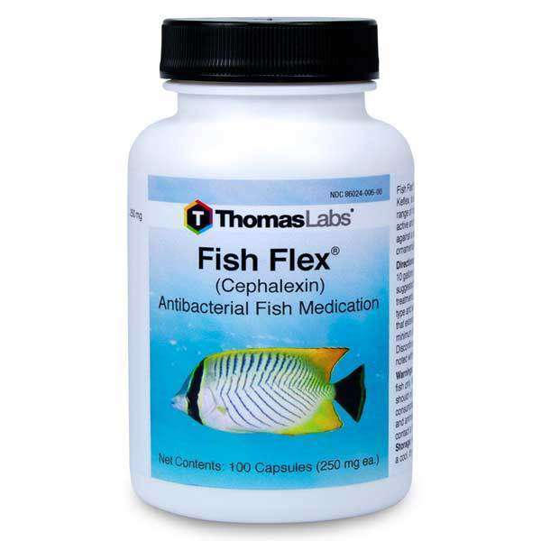 Fish Flex - Cephalexin/Keflex 250 mg Capsules (100 Count)