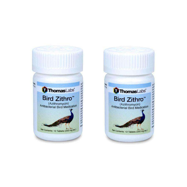 Bird Zithro - Azithromycin 250 mg Tablets (12 Count) - 2 Pack