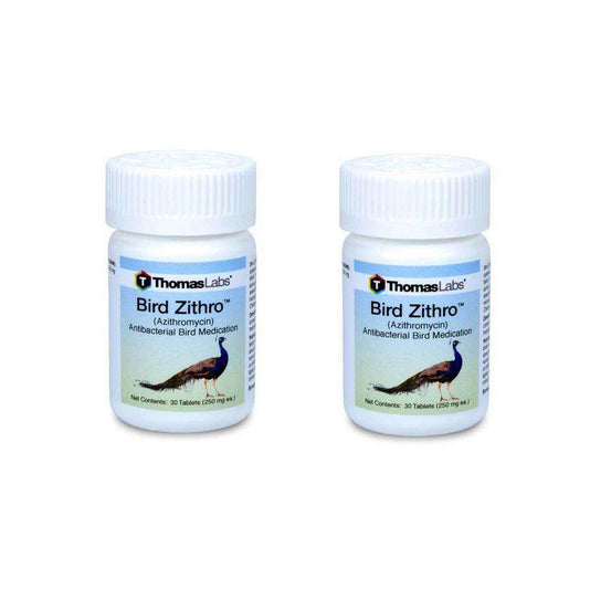 Bird Zithro - Azithromycin 250 mg Tablets (30 Count) - 2 Pack