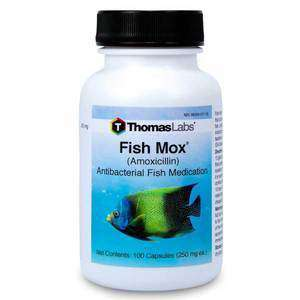 Fish Mox - Amoxicillin 250 mg Capsules (100 Count) (Limited Stock)