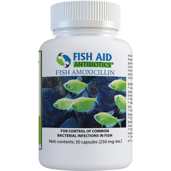 (Fish Mox Equivalent) Fish Amoxicillin 250 mg - 30 count