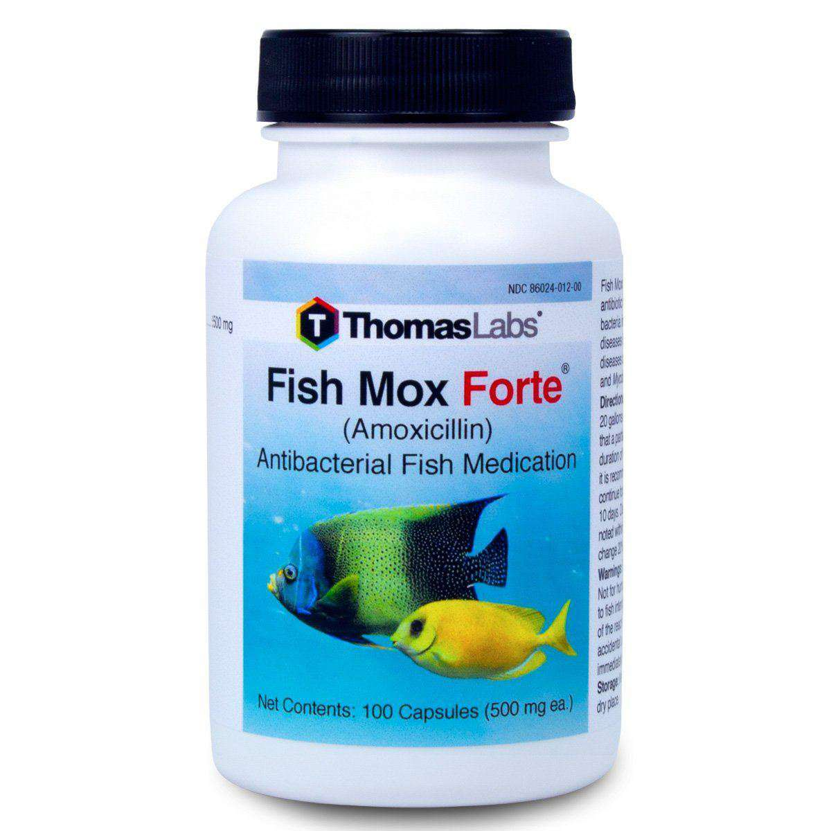 Fish Mox Forte - Amoxicillin 500 mg Capsules (100 Count) (OUT OF STOCK)