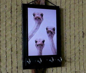 Funny Ostrich Wall Key Hanger