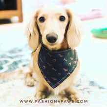 Load image into Gallery viewer, Louis Doxie Bandana for dogs reversible