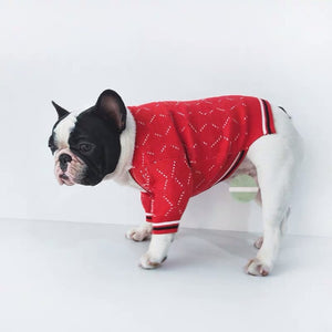 High Fashion Cardigan for small to medium sized dogs