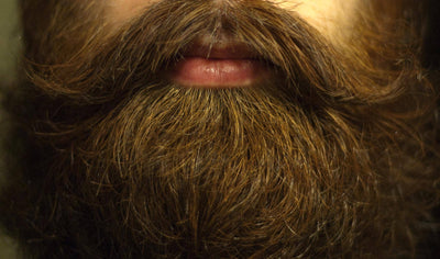 Tips for Starting and Cultivating Your Best Beard