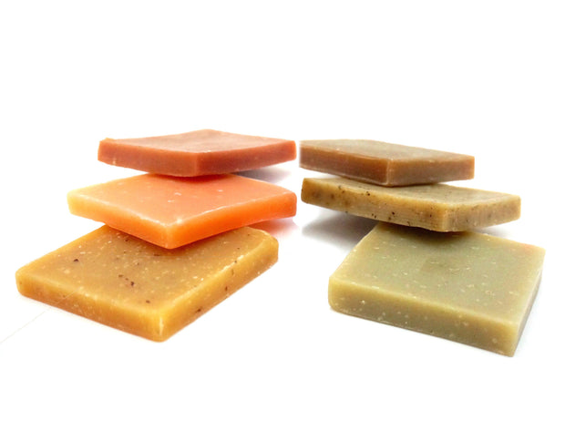Beauty and the Bees Solid Shampoo Bar Hair Samples - Professor Fuzzworthy Beard Care & Grooming