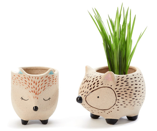 Southwest Animal Planter, Assorted Styles