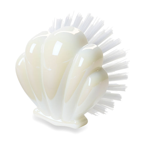 Shell Scrub Brush - Dish Brush