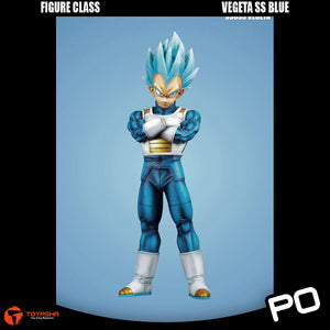 Figure Class - Vegeta SS Blue ( Two Versions )
