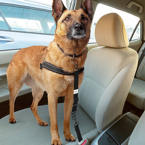 Dog Seat Belt - Adjustable Car Harnesses