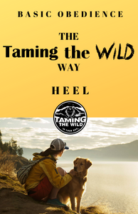 3. Basic Obedience the Taming the Wild Way - HEEL