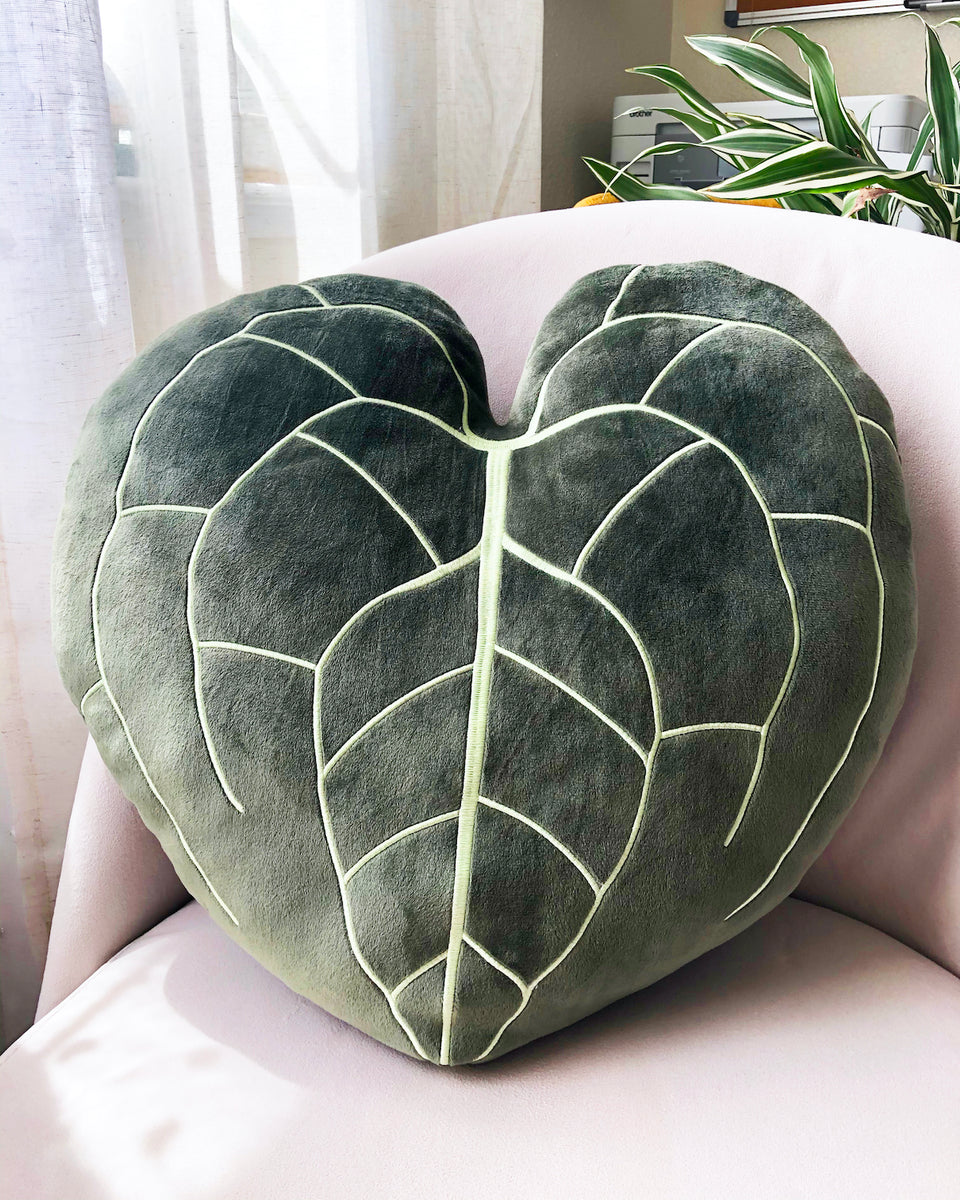 Anthurium Clarinervium Pillow