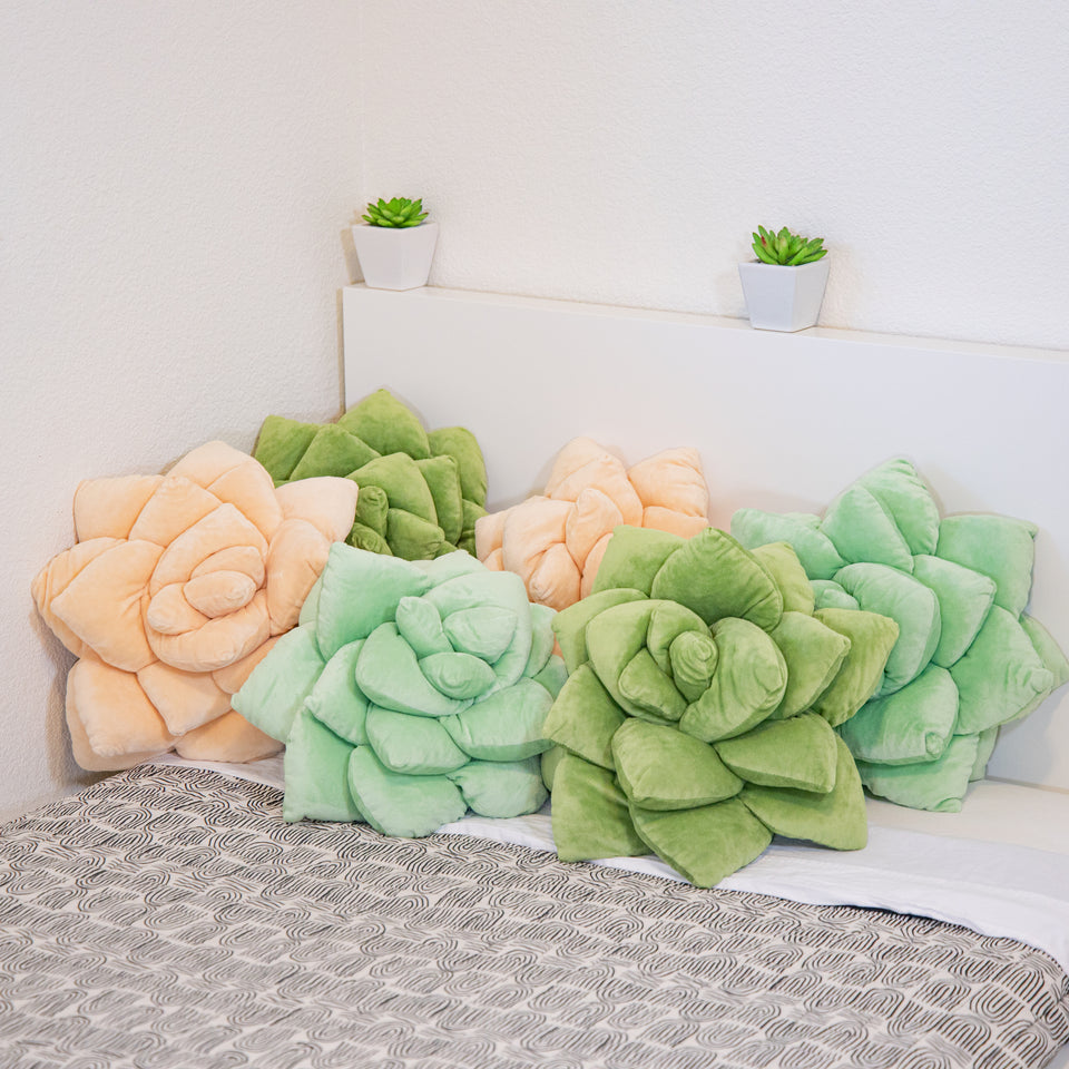 Succulent Pillows