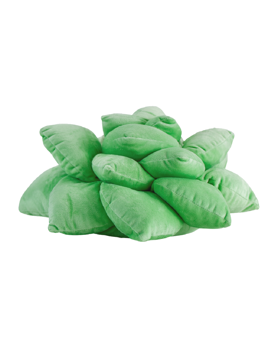 Succulent Plush Pillow - Sage Green - Green Philosophy Co.