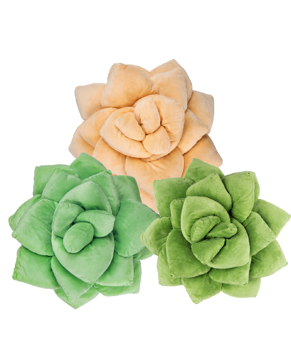 Succulent Plush Bundle - Green Philosophy Co.