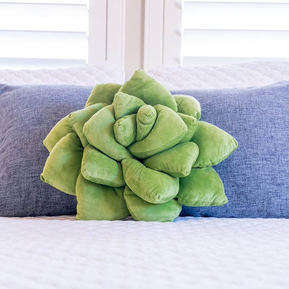 Succulent Plush Pillow - Olive Green - Green Philosophy Co.