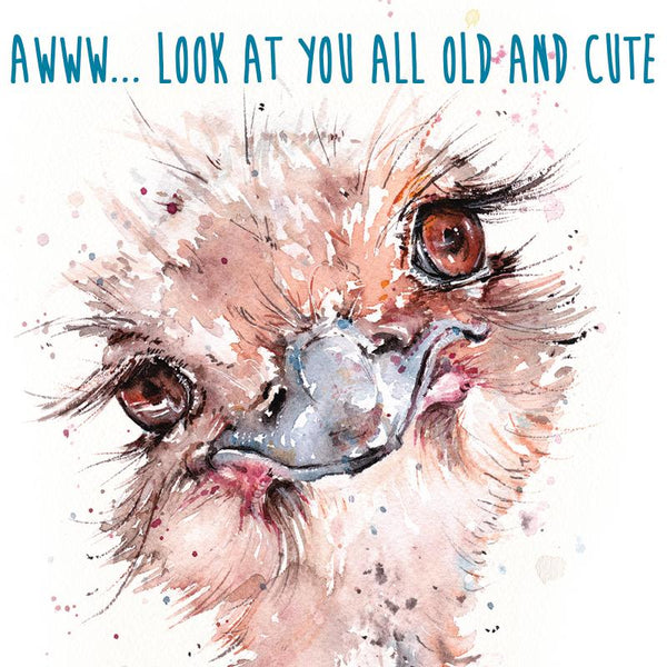 Fabulous Old Emu Greeting Card