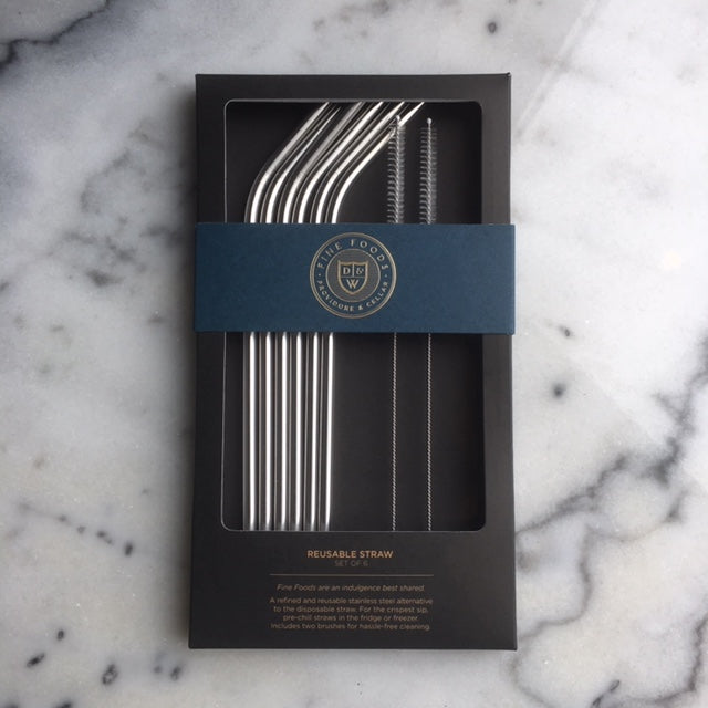 Reusable Stainless Steel Straws  - Set of 6