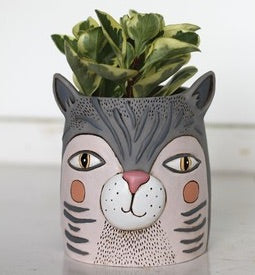 Fat Cat Pot