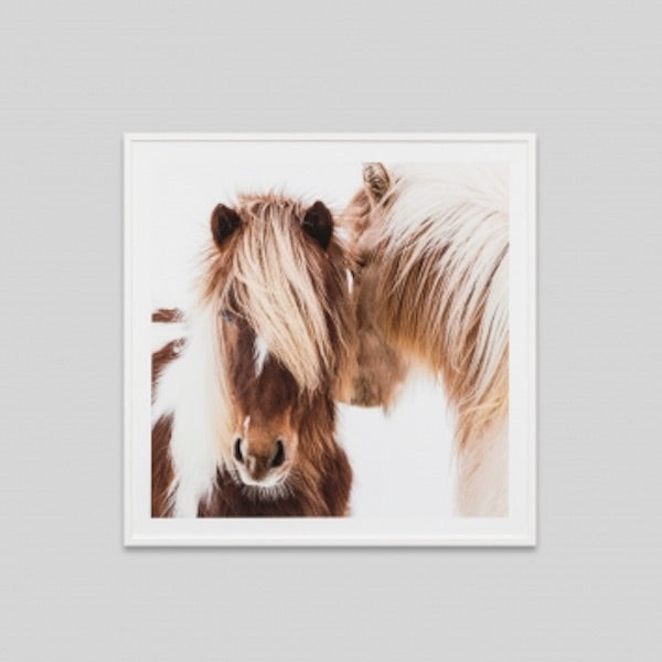 Winter Foal Print