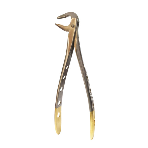 Dental F5 Lower Anterior Forceps