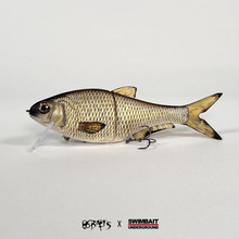 Load image into Gallery viewer, Swimbait Underground X 86 Baits CFH - Matte Golden Shiner