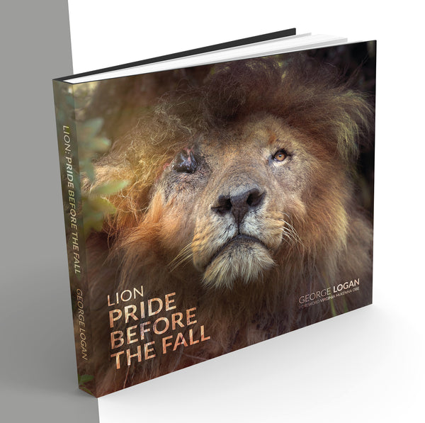 Lion: Pride Before the Fall