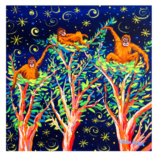 Stargazing Orangutans Christmas cards