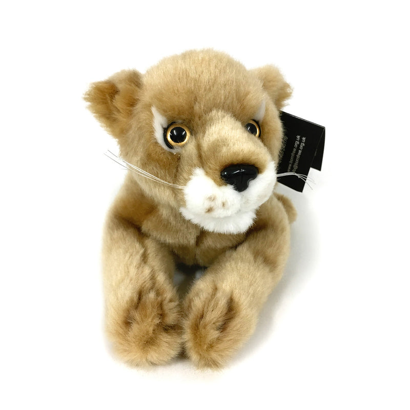 Elsa the lioness cuddly toy