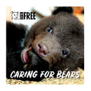 'Virtual gift' card –  Caring for bears