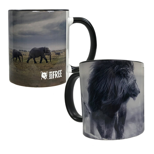 Animal Photo Mugs