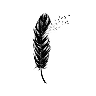 Feather and Birds