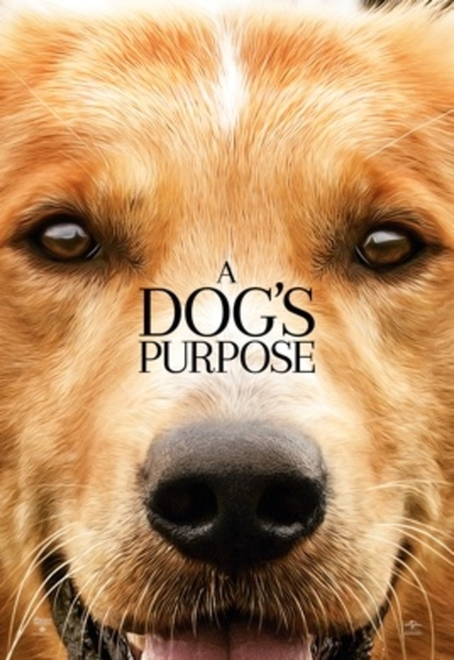 A Dog's Purpose HD Digital Code (Redeems in Movies Anywhere; HDX Vudu & HD iTunes & HD Google Play Transfer From Movies Anywhere)