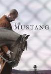 The Mustang Vudu HDX or iTunes HD or Google Play HD or Movies Anywhere HD Code (HD iTunes & HD Google Play Transfer From Movies Anywhere)