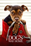 A Dog's Way Home Vudu HDX or iTunes HD or Google Play HD or Movies Anywhere HD Code (HD iTunes & HD Google Play Transfer From Movies Anywhere)