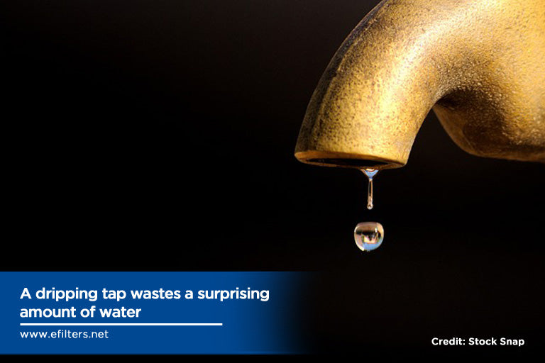 dripping tap wastes surprising amount of water