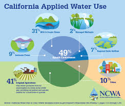 California water usage