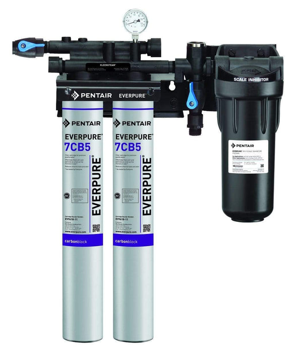 Everpure Kleensteam II Twin Water Filter System EV9797-22 - Efilters.net