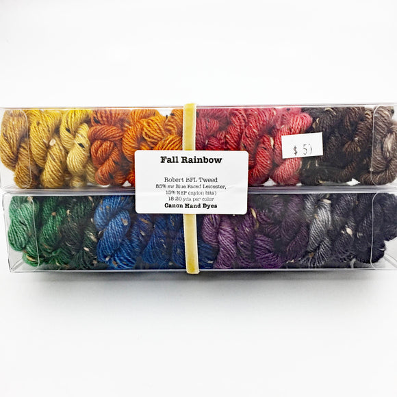 Fall Rainbow; Minis set on Robert Tweed Fingering Weight Yarn